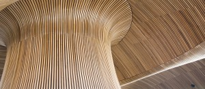 Bâtiment construction bois © Fotolia
